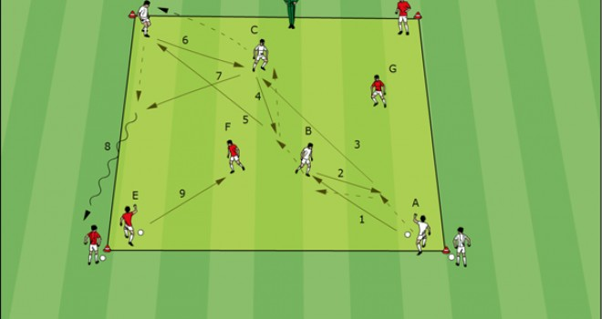 Soccer Software: Best Soccer Exercises of Coaches from all over the World